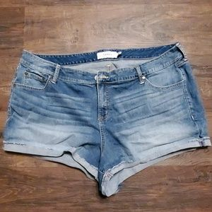 Torrid Plus size 24 Jean Shorts